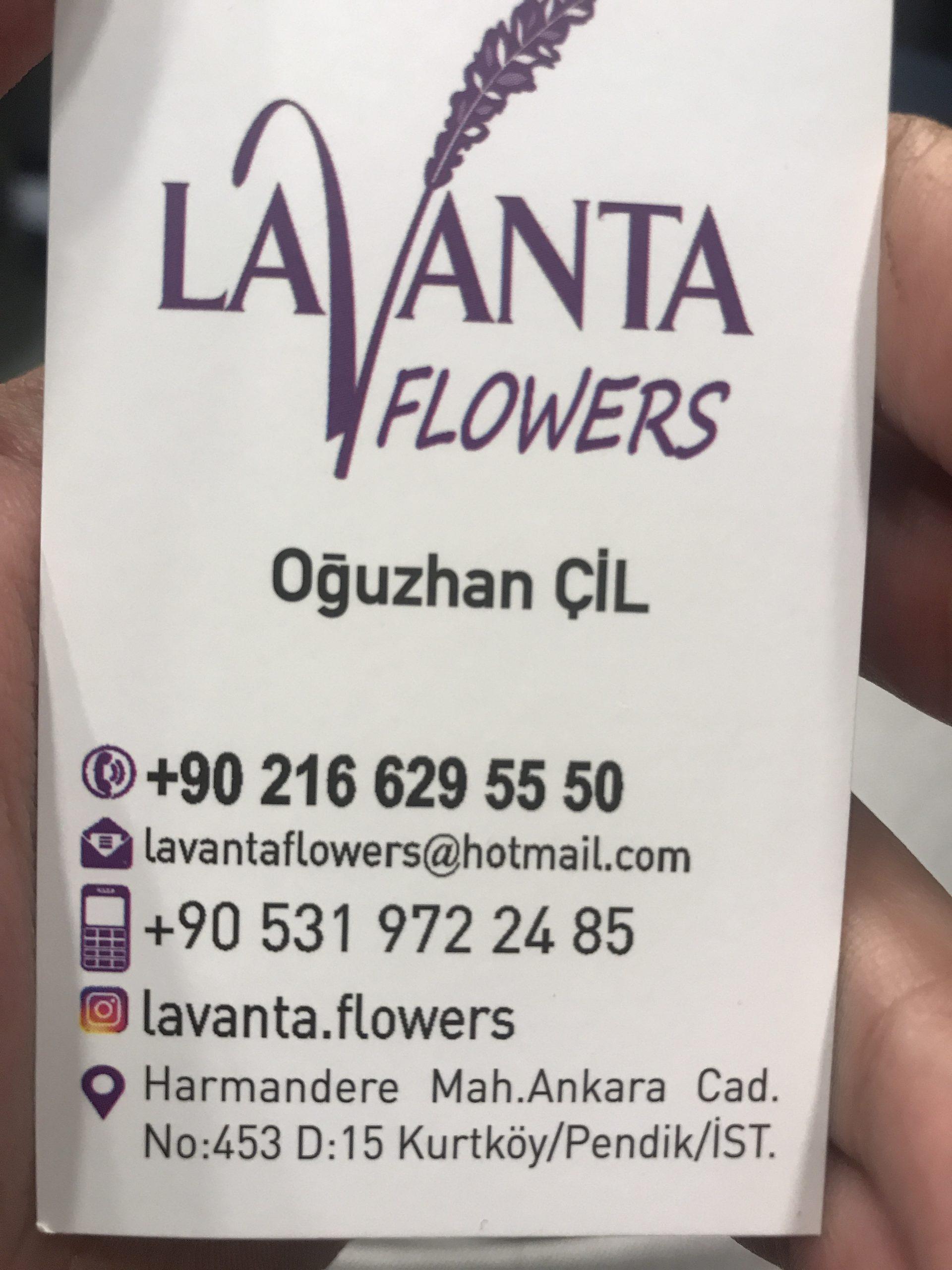 LAVANTA FLOWERS ÇİÇEKCİ